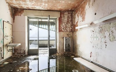 5 Tips for Identifying Water Damage in Your Home